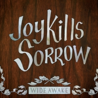 Wide Awake--Joy Kills Sorrow resized